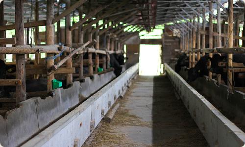 牧舎みねむら農場HACCAP認証とは